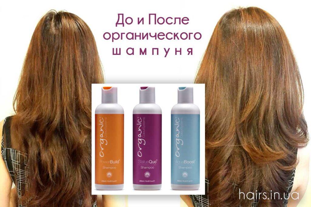 Фото волос помытых органическим шампунем