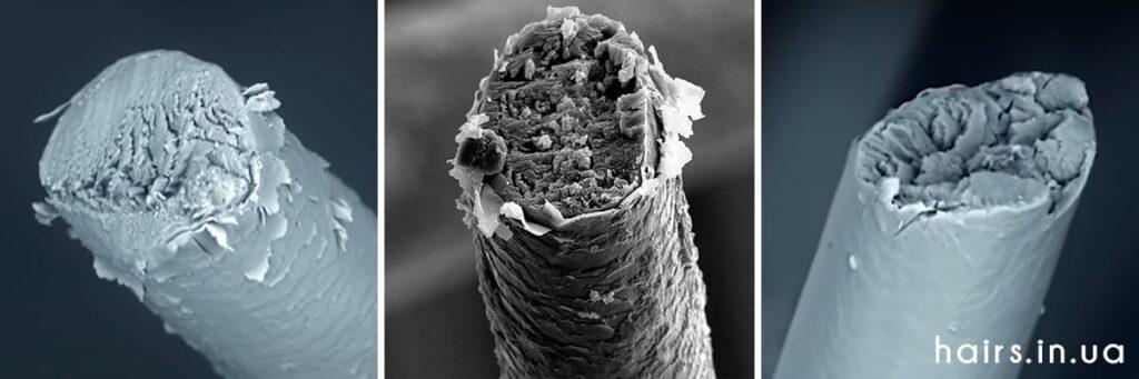 Фото тупых кончиков волос под микроскопом